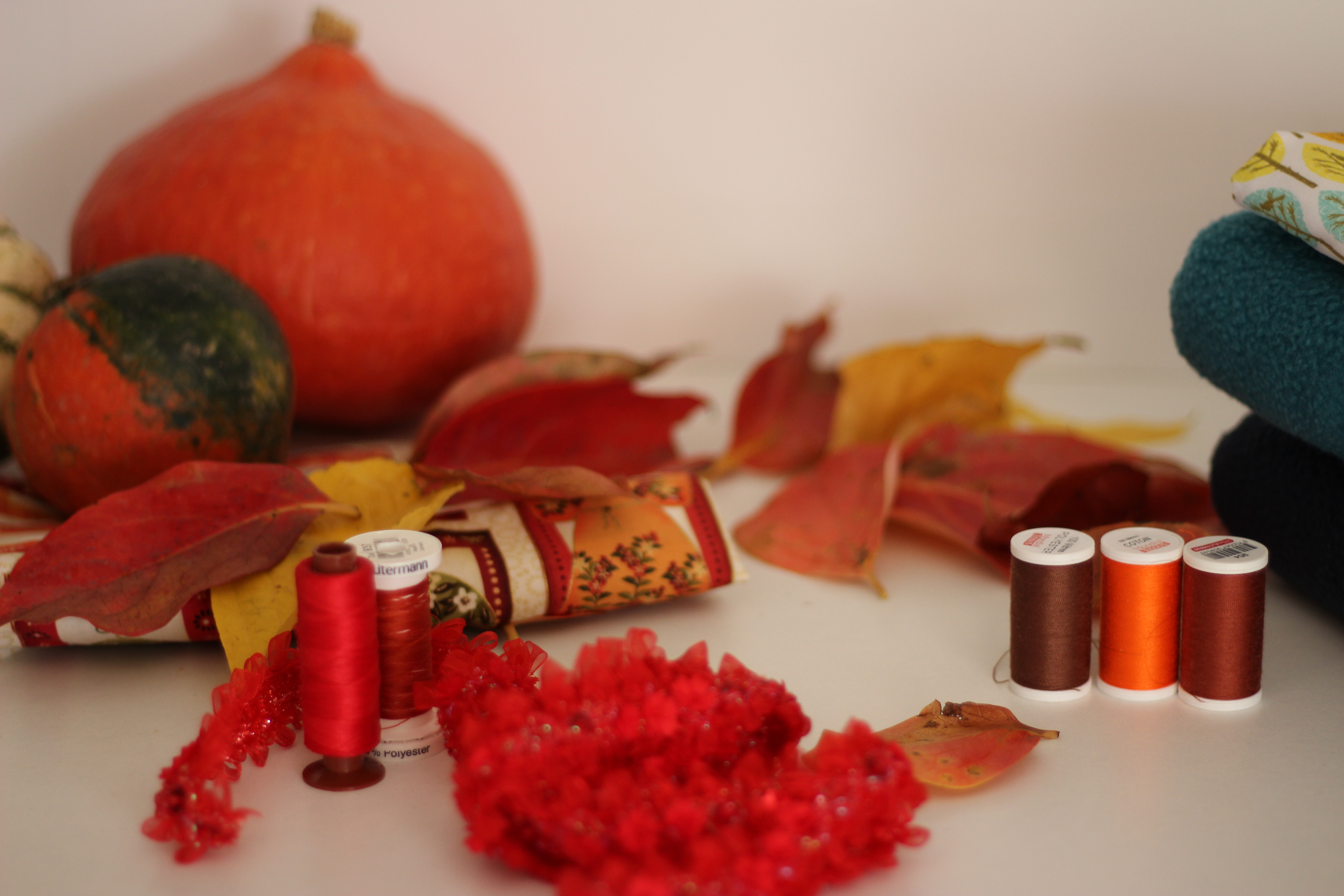 tissus automne